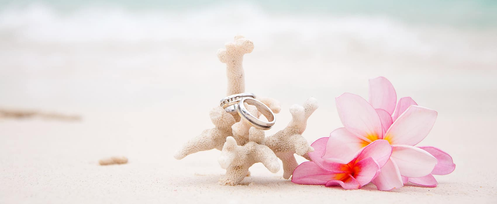 Desire Riviera Maya Pearl Resort Weddings